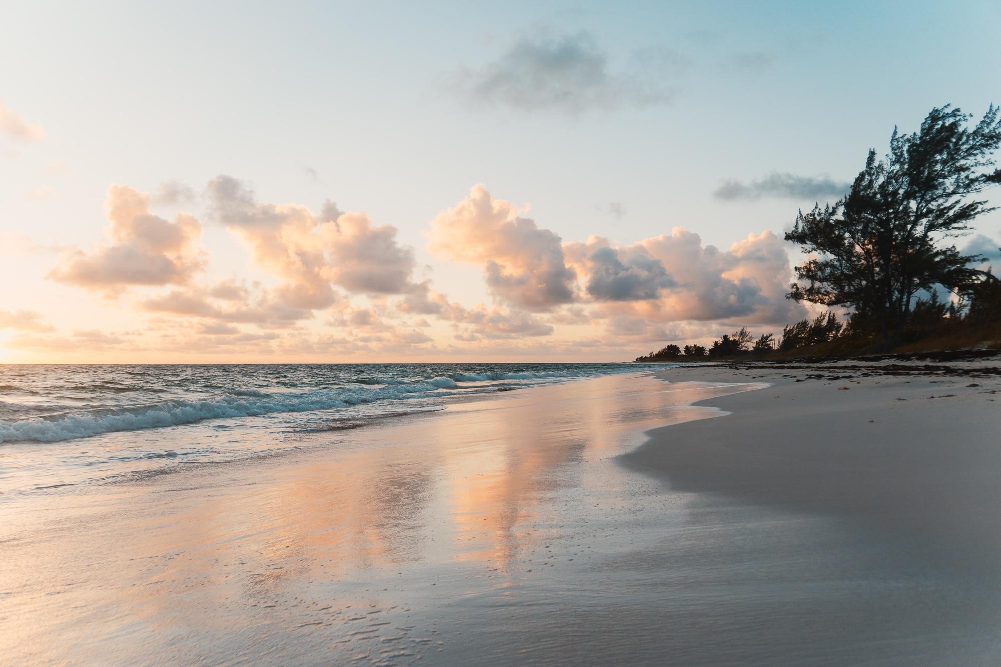 Aloha all Day every Day: Mehr Hawaii-Feeling im Alltag