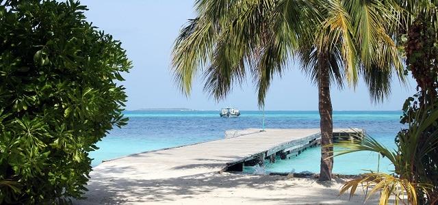 Strand mit Palmen und Steg