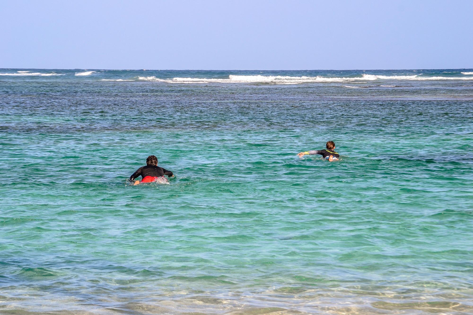 Sandstrand mit Palmen auf Guadeloupe