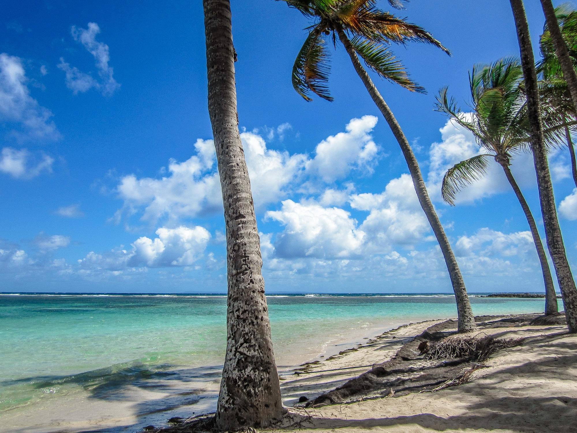 Strand Basse-Terre Karibik