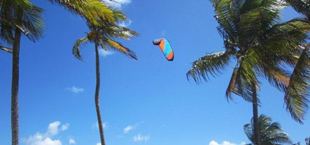 Kite-Schirm in der Luft mit Palmen