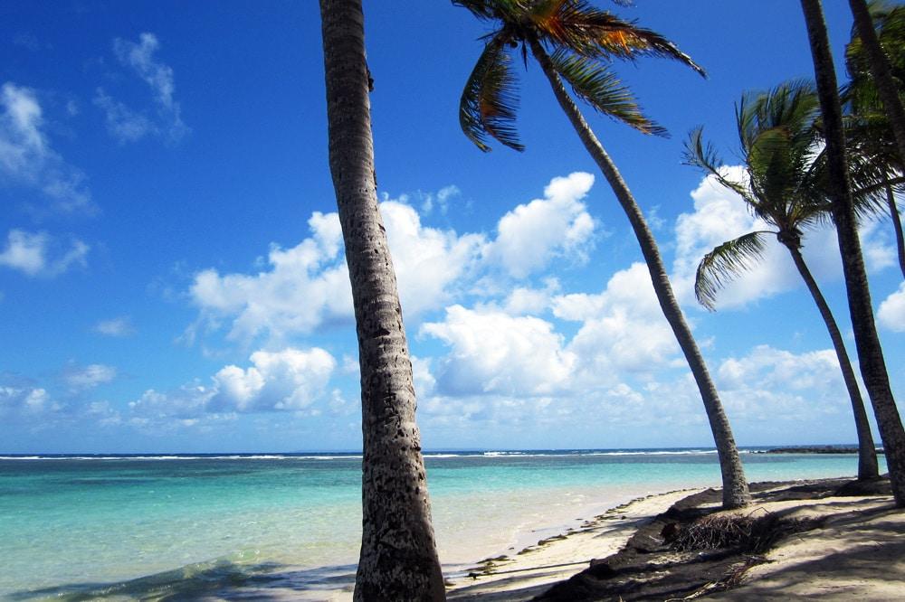 Guadeloupe Saint Francois Strand Grande Terre