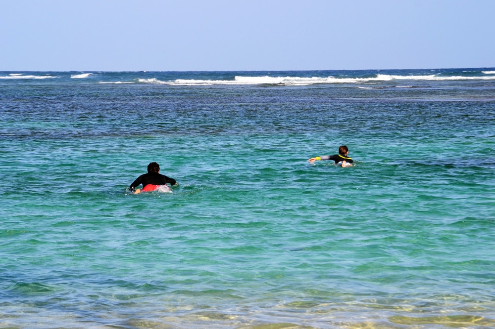 Wellenreiten und Surfen auf Guadeloupe