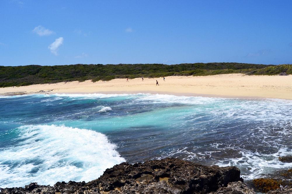 Pointe des Châteaux Guadeloupe Grande Terre