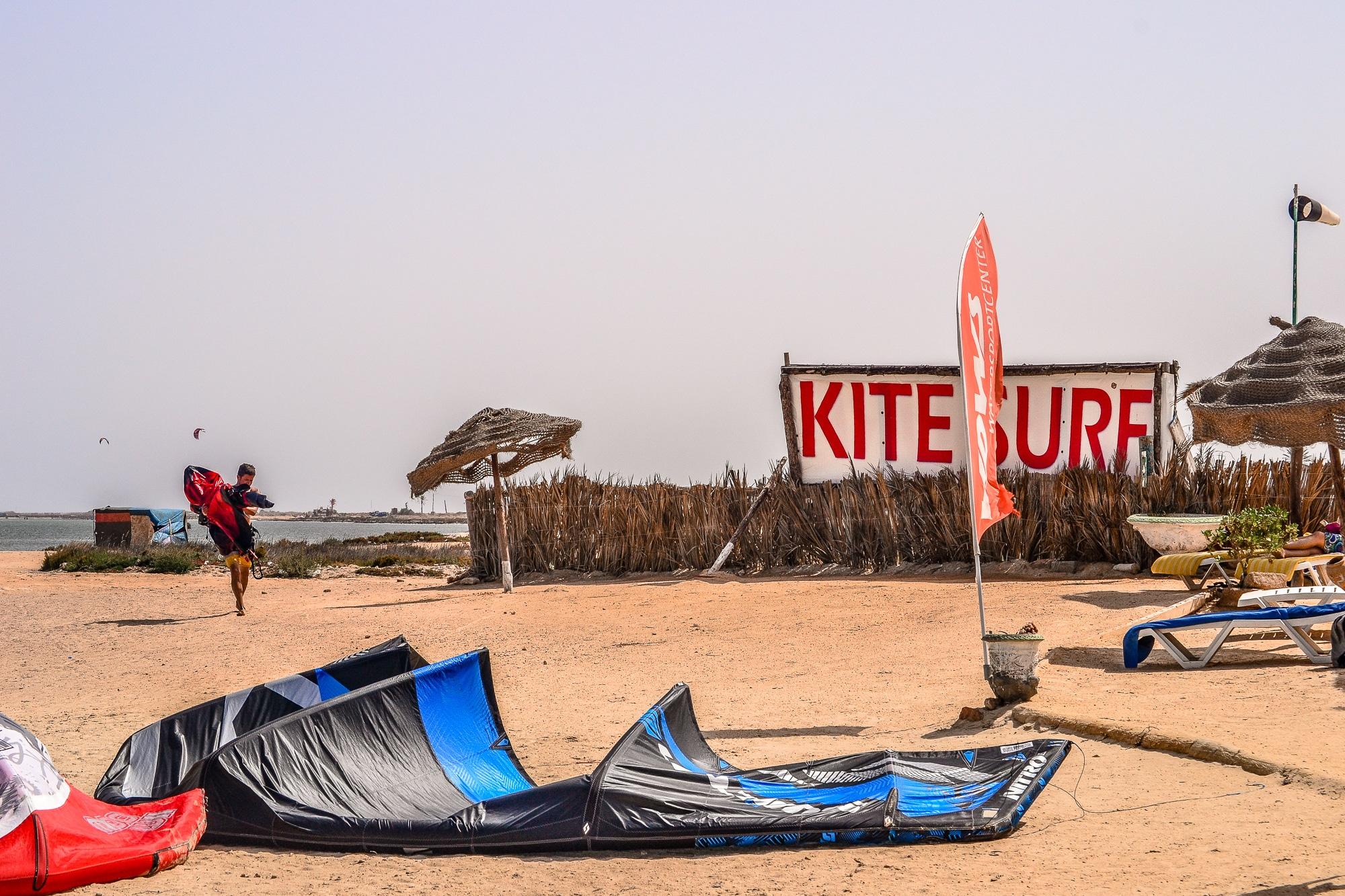 Kamele auf Djerba am Strand