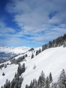 Schneelandschaft in Tirol