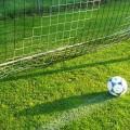 Fußball auf dem Rasen im Tor