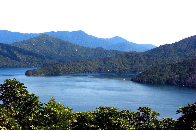 Marlborough Sounds auf der südinsel von Neuseeland