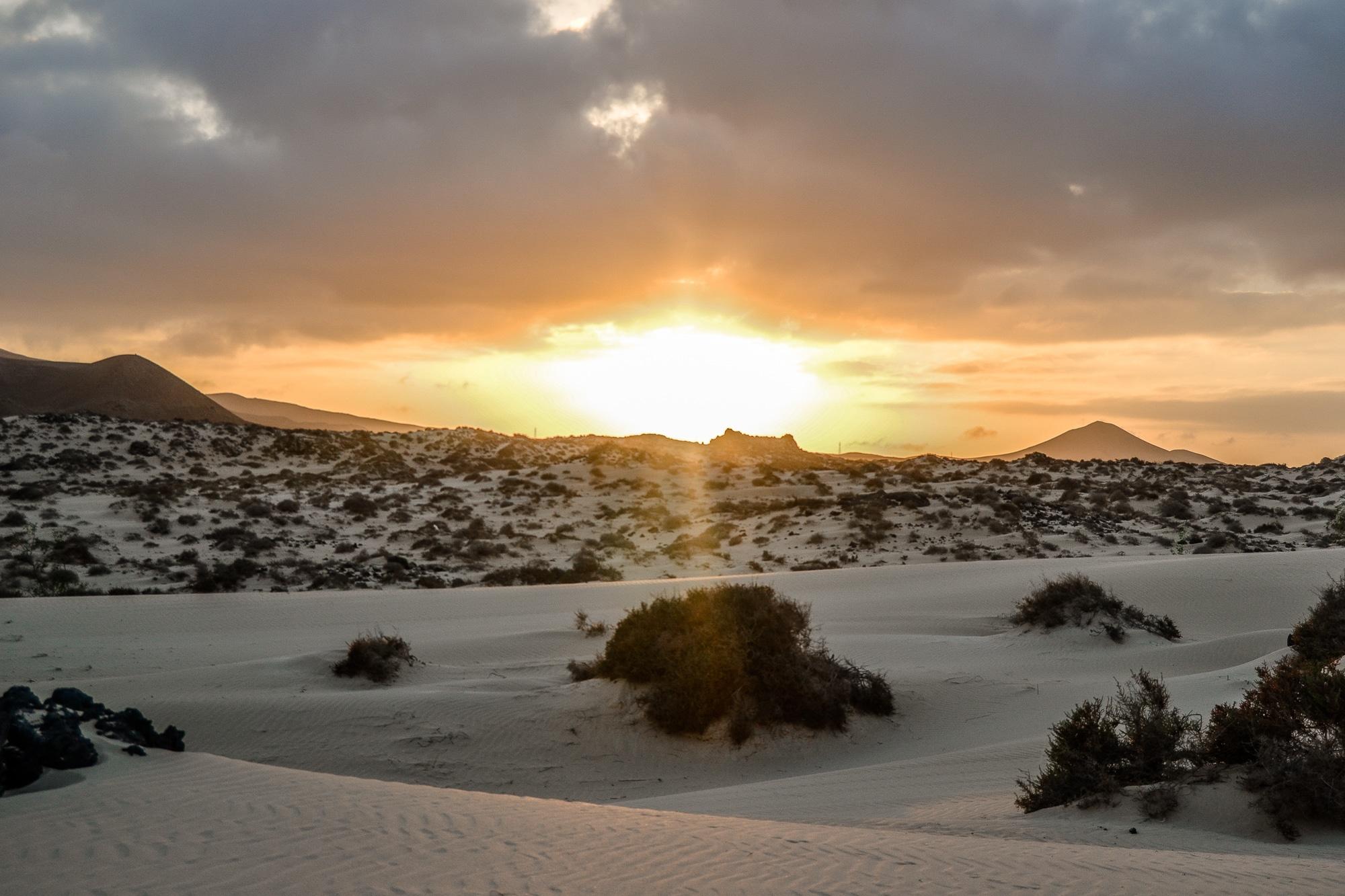 Blick auf den Playa Sotavento auf Fuerteventura
