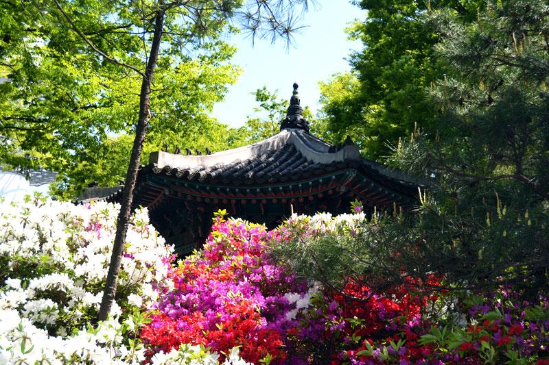 Tempel vor dem Seoul Tower