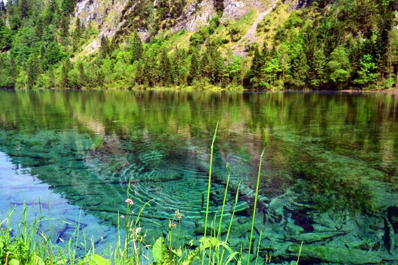 Förchensee in der Seenlandschaft Reit im Winkl in Bayern