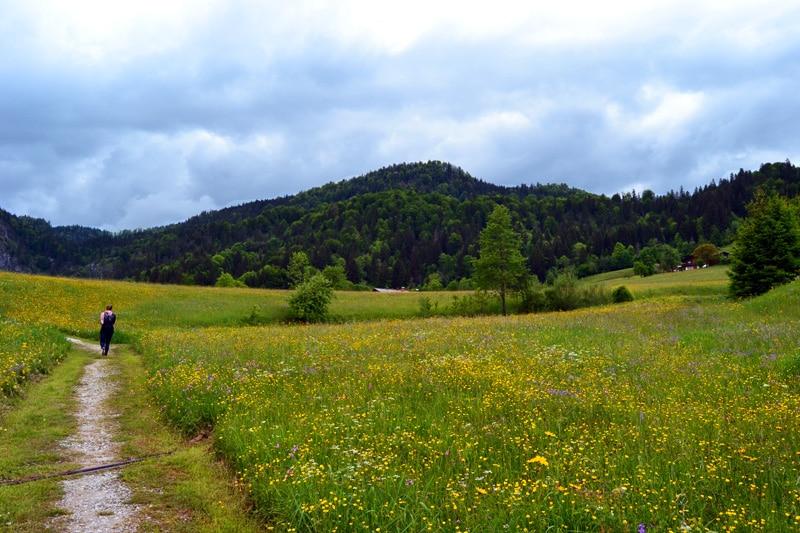 E-Bike Tour in Reit im Winkl im Chiemgau, Bayern