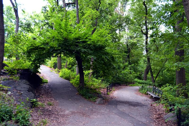 fahrrad leihen central park