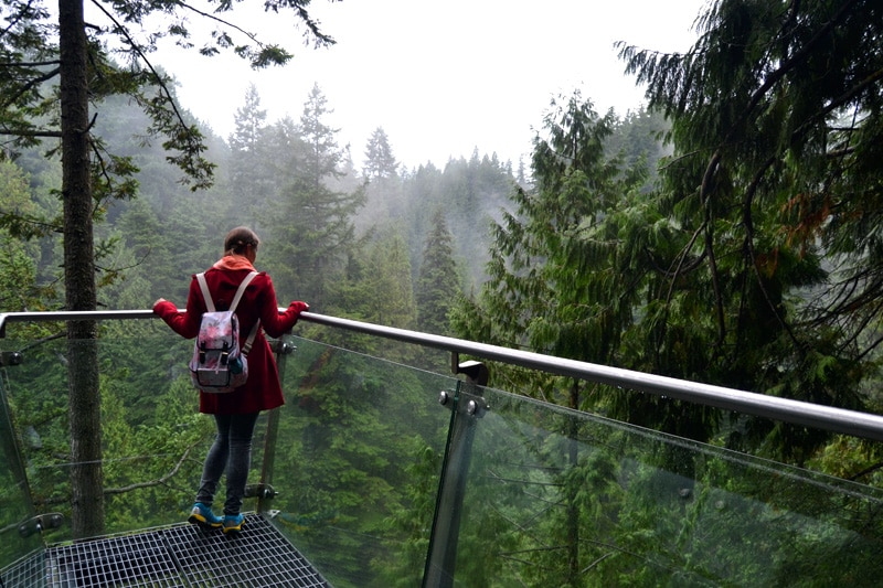 Reisemonat September: Capilano Suspension Bridge Park Treetop Adventure