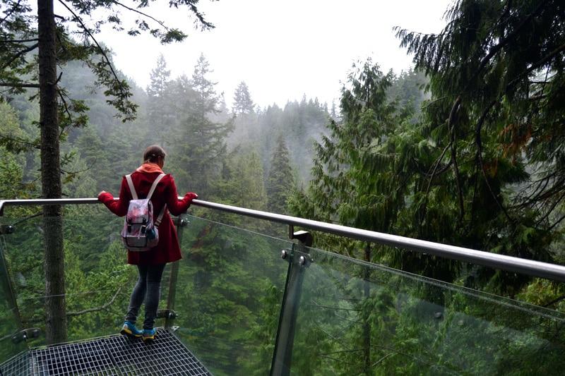 Capilano Suspension Bridge Park Treetop Adventure