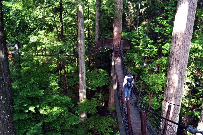 Treetops Adventure im Capilano Bridge Park Vancouver