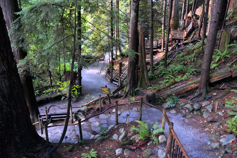 Capilano Suspension Bridge Park Vancouver, Kanada