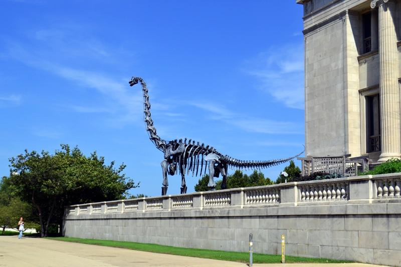 Chicago Sehenswürdigkeiten: Field Museum in Chicago Dinosaurierstatue