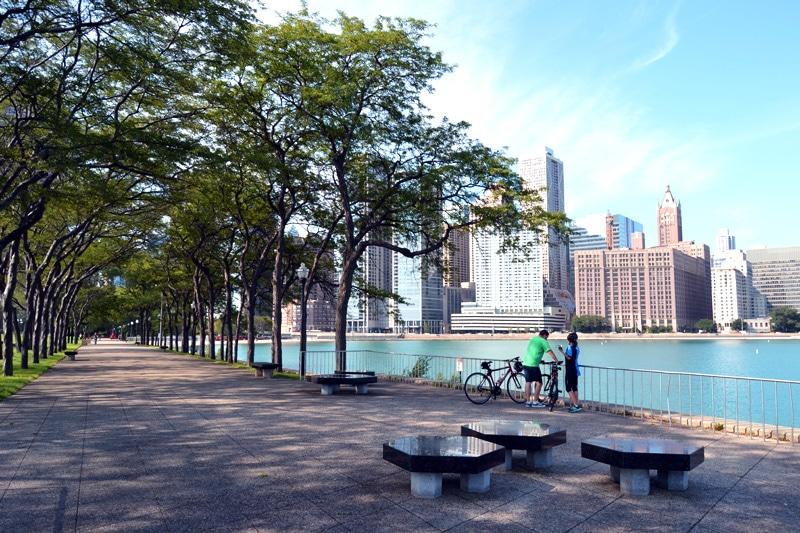 Chicago Olive Park