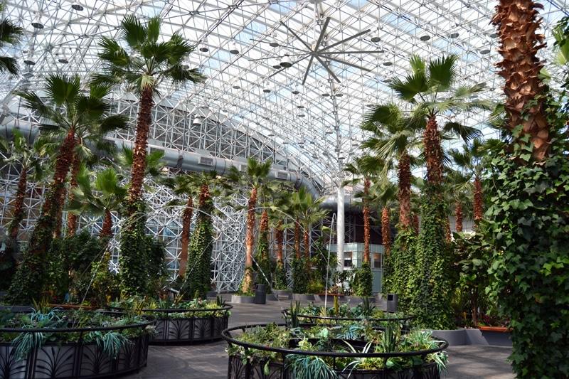 Chicago Sehenswürdigkeiten: Navy Pier in Chicago: Botanischer Garten
