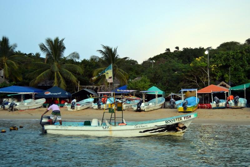 Bootsausflug Schildkröten Delfine Puerto Escondido