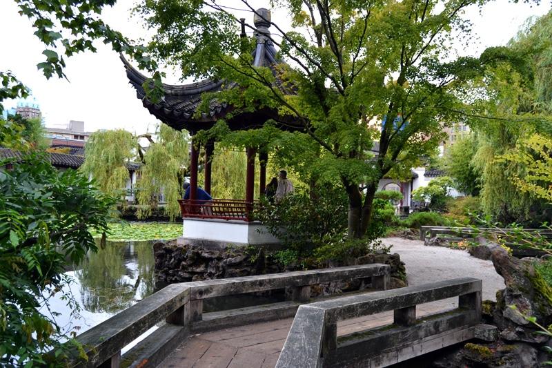 Urwaldriesen im Dr. Sun-Yat-Sun-Garten in Chinatown Vancouver