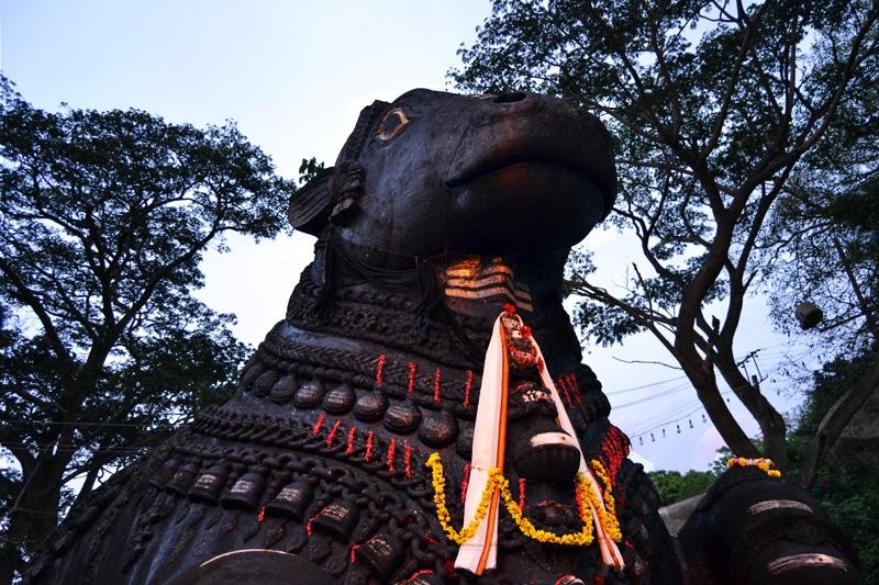 Chamundeshwari Tempel - Chamundi Tempel in Mysore - Nandi Bull