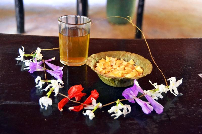 Tropical Spice Plantation in Goa