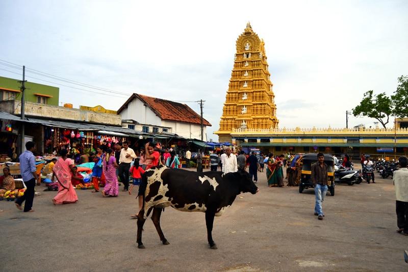 Indien Abenteuer: Der Chamundi Tempel in Mysore