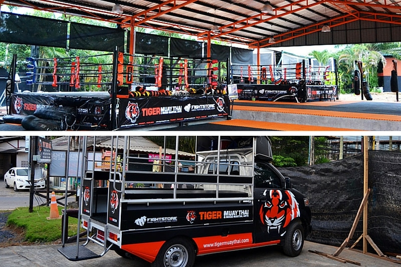 Tiger Muay Thai Camp Thailand
