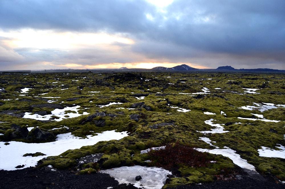 Anfahrt zur Blauen Lagune in Island - Lavafelder der Halbinsel Reykjanes