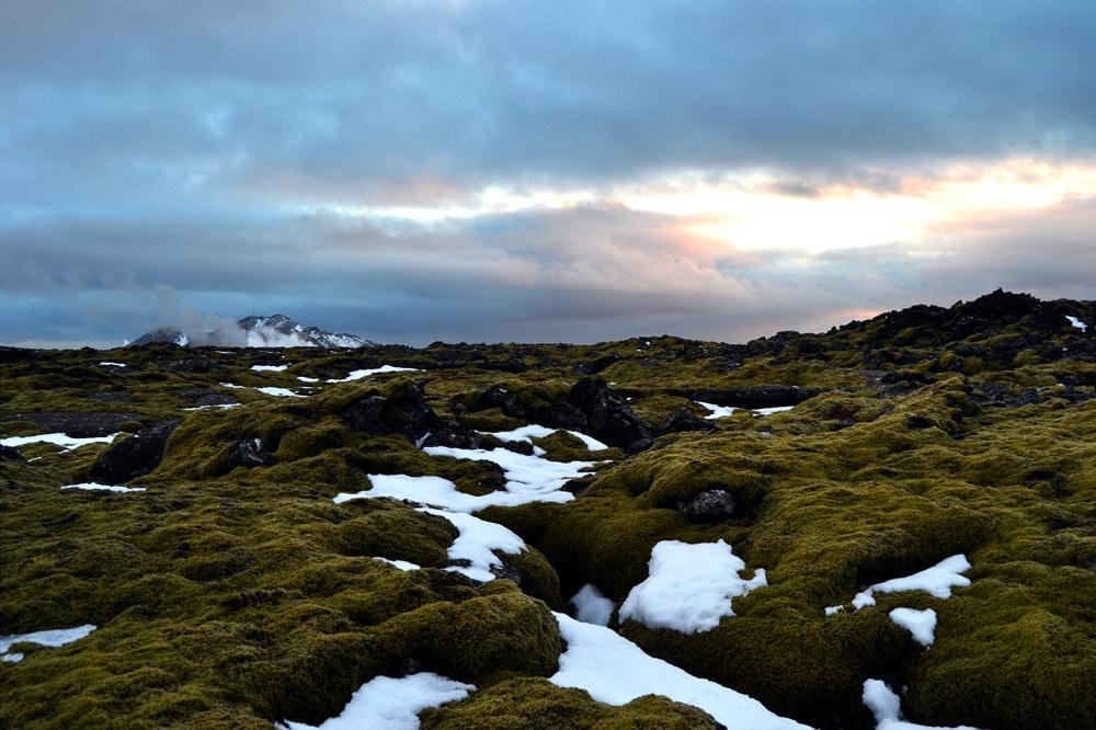 Anfahrt zur Blauen Lagune in Island - Lavafelder