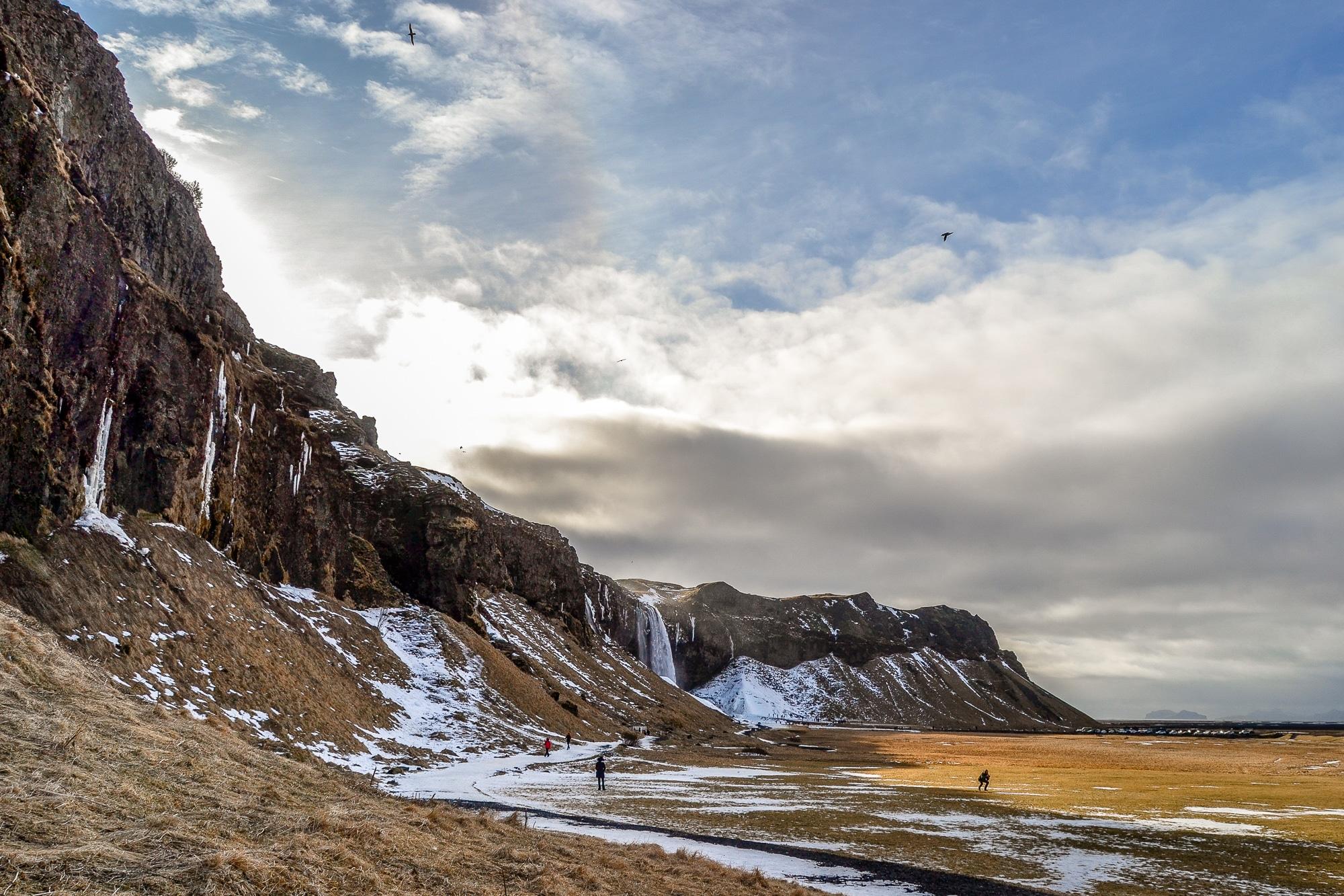 Skurrile Fakten Island: 30 verrückte Dinge, die ich über Island erfahren habe.
