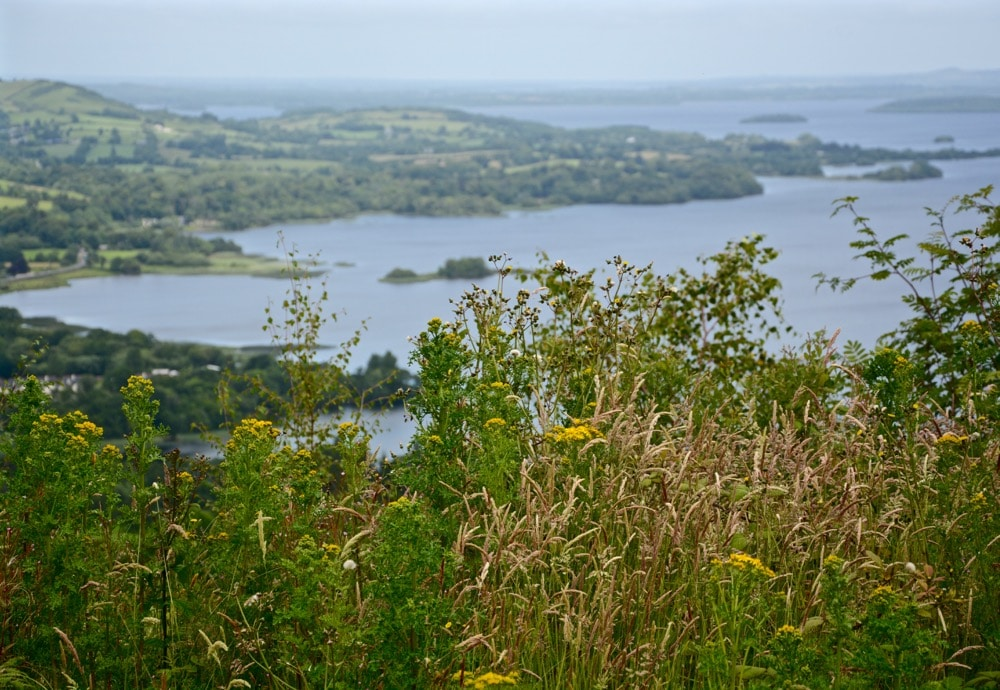 Kilalloe im Südwesten von Irland: Wanderung