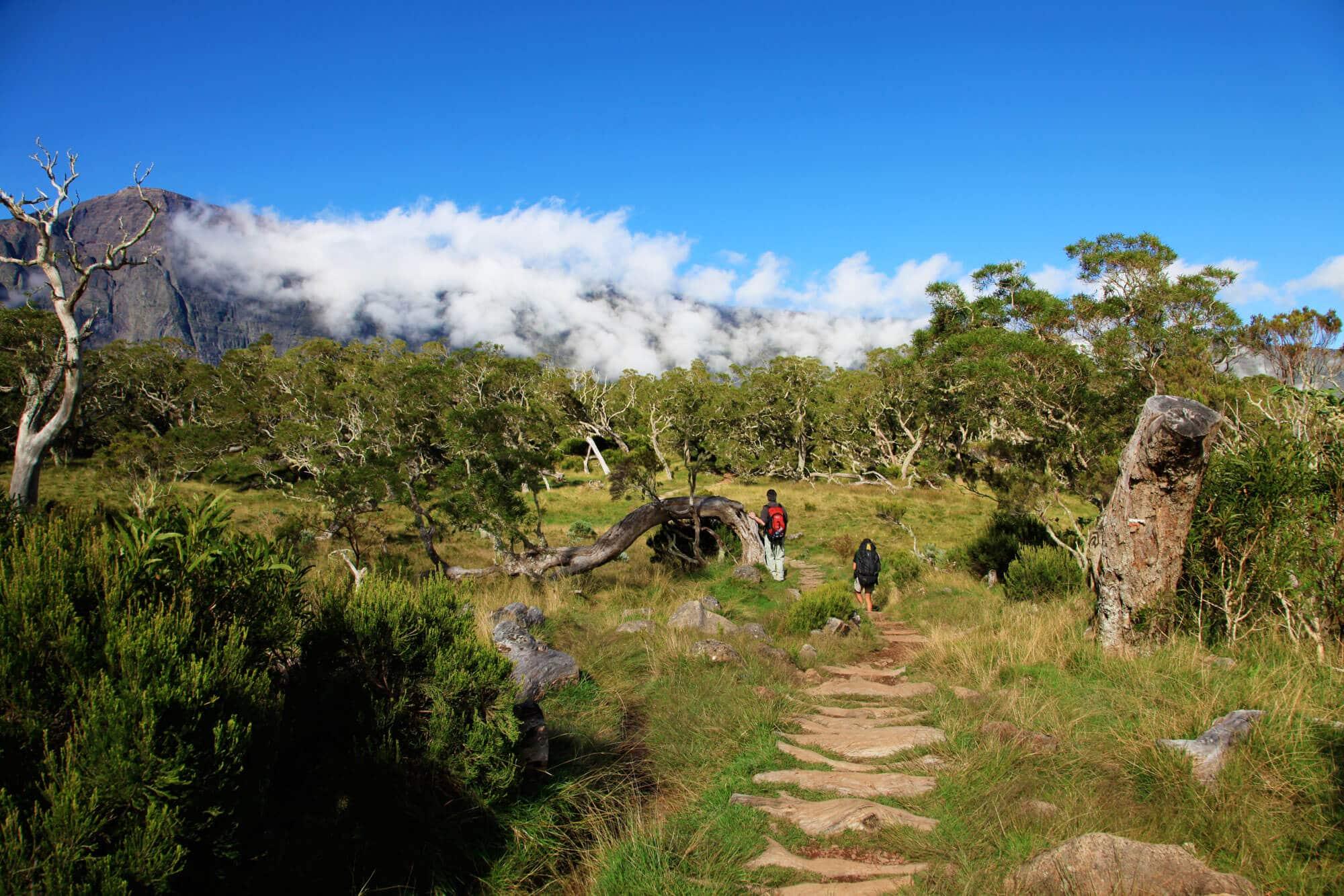 Indischer Ozean: Die Trauminsel La Reunion - La Réunion Sehenswürdigkeiten