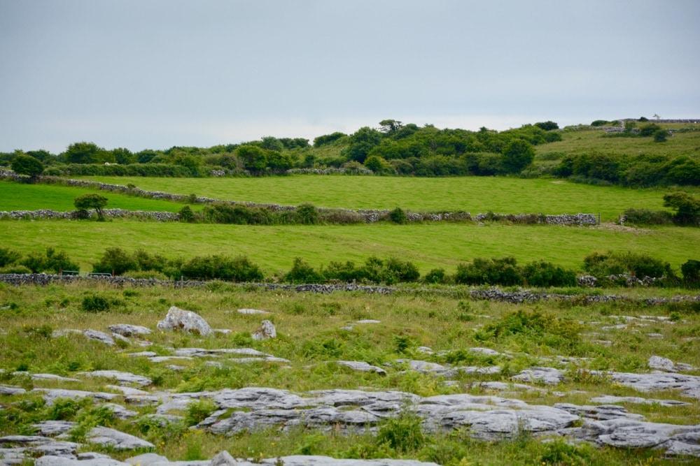 The Burren im Südwesten von Irland