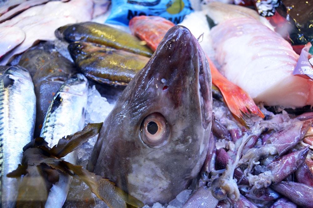 Fisch und Meeresfrüchte in der Östermalmshalle Stockholm
