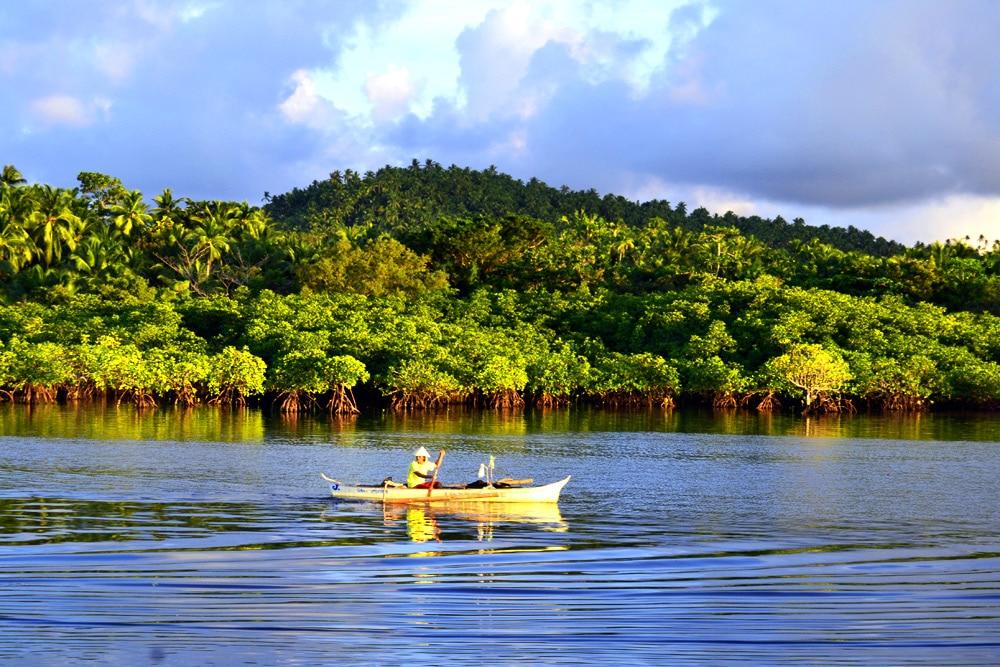 Mangrovenwälder Siargao Philippinen Santa Monica Pier