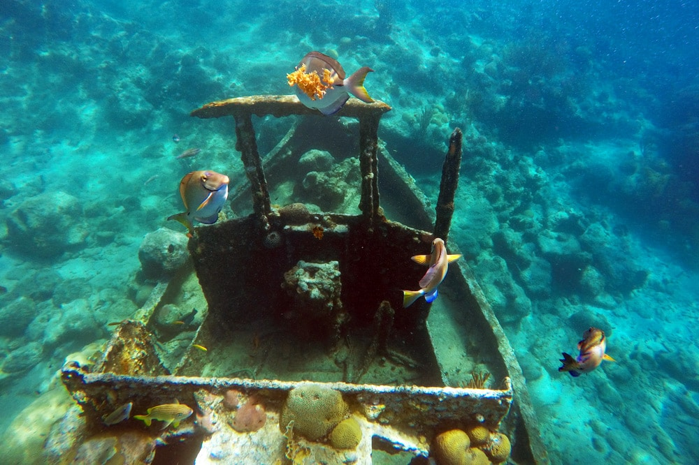 Curacao: Schnorcheln und Tauchen am Tugboat Schiffswrack