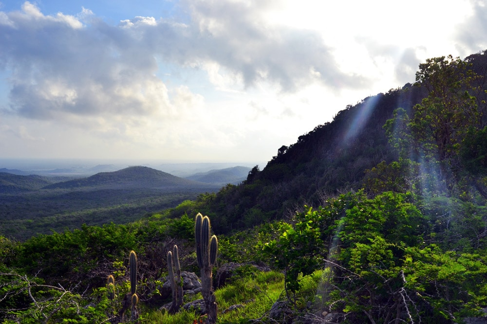 Curacao: Wanderung auf den Christoffelberg im Christoffel Nationalpark