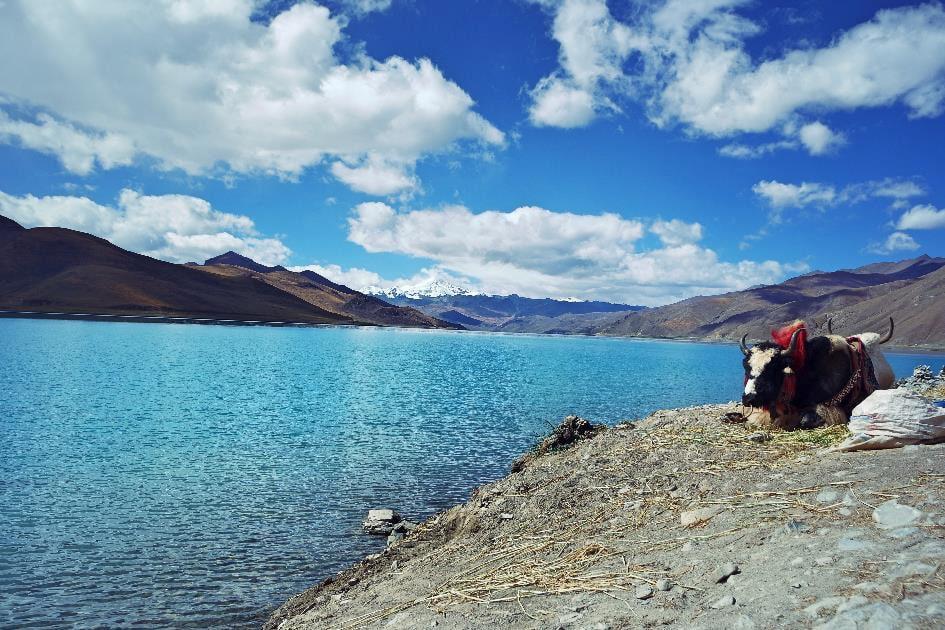 Tibet Reise mit Tour zum Mount Everest Basecamp