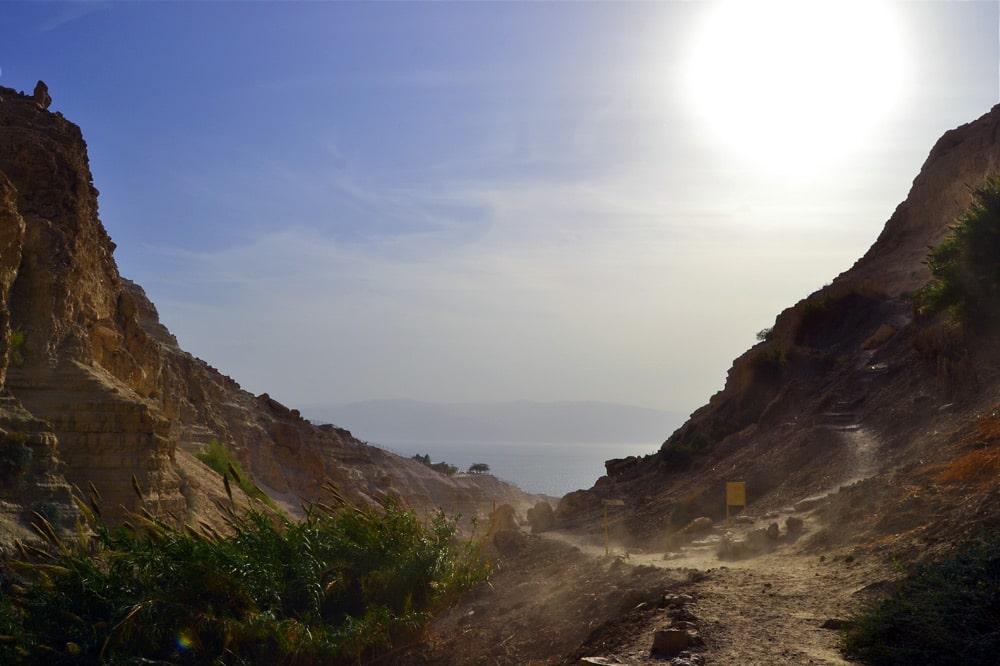 Masada Sunrise Tour Abraham Tours En Gedi Nationalpark