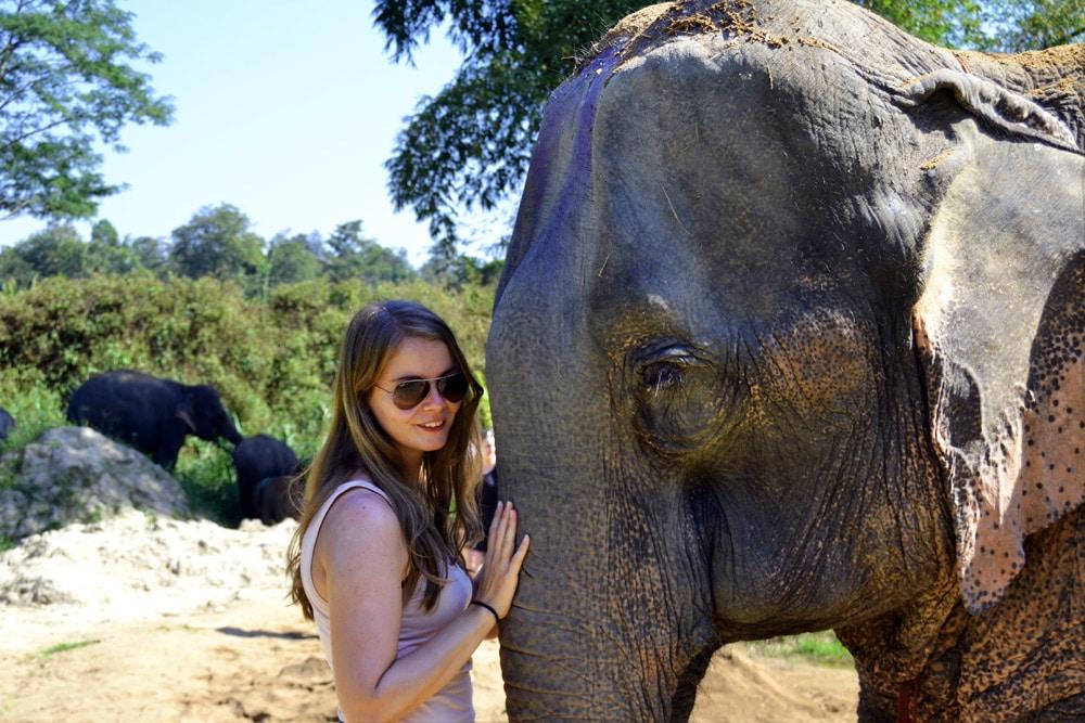 Elephant Retirement Park Chiang Mai - Elephant Sanctuary
