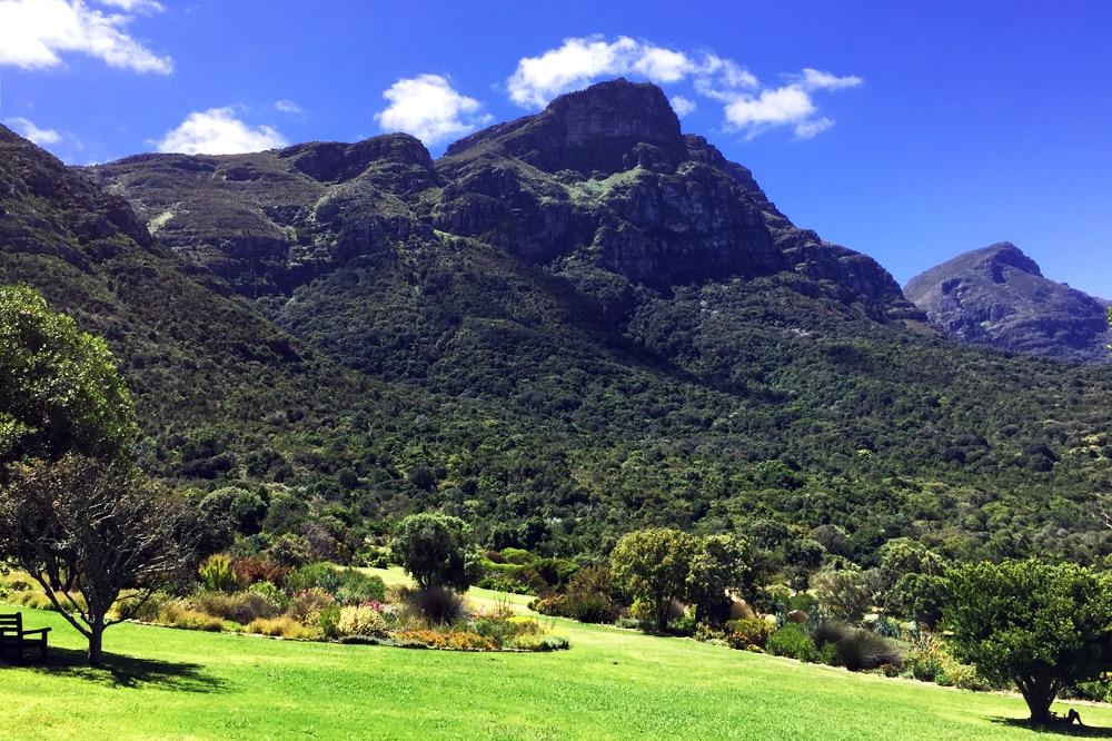 Kirstenbosch Botanischer Garten Kapstadt