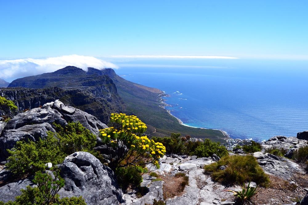 Tafelberg Ausblick auf Kapstadt - Kapstadt Top 10 Sehenswürdigkeiten