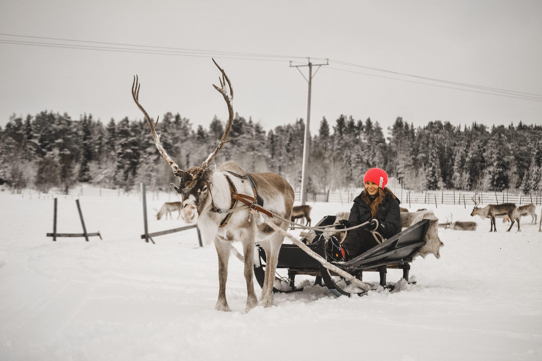 Finnland: Skifahren und Winterurlaub in Levi, Lappland