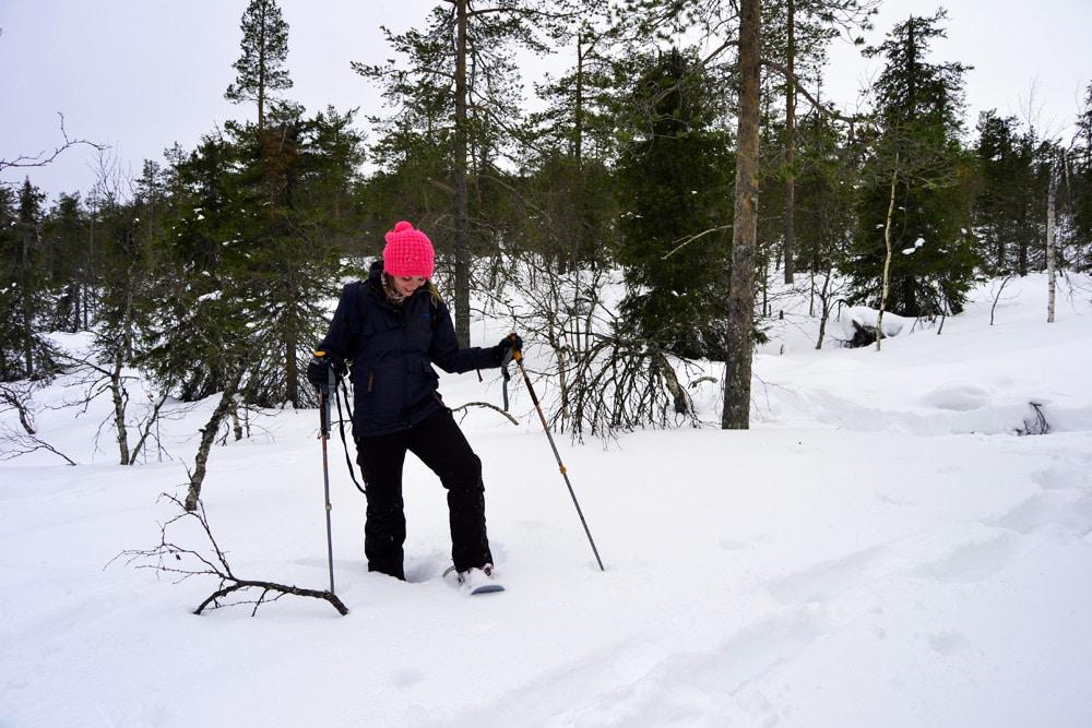 Schneeschuhwandern in Levi Lappland