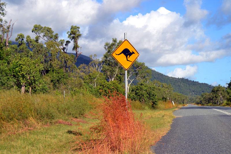 Alleine reisen in Australien: Tipps für deine Soloreise nach Down Under