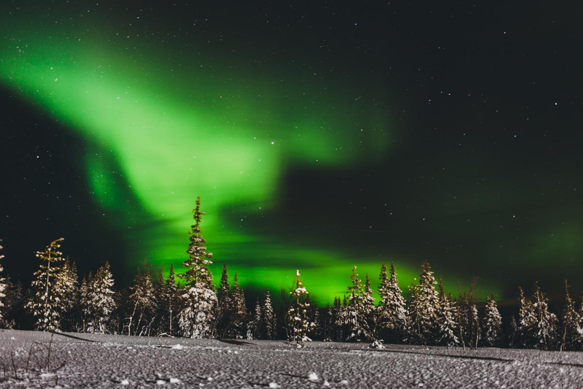 Nordlichter in Yllas, Lappland