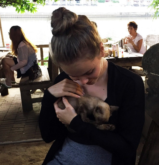 Die besten Restaurants in Chiang Mai: Regina Cat Cafe - Katzencafe